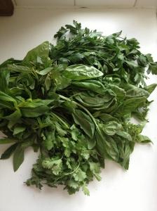 Herbs... Delicious herbs...