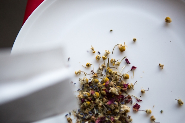Herbal Tea | Nadia Felsch