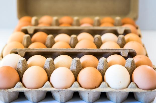 eggs - essentials